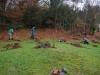 forest-garden-05