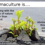 Permaculture is...