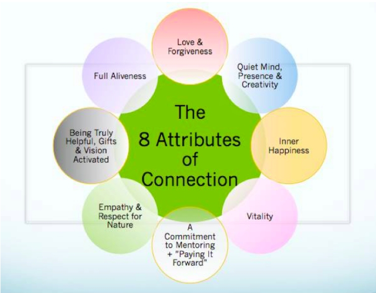 The 8 attributes of connection