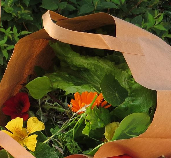 salad_bag